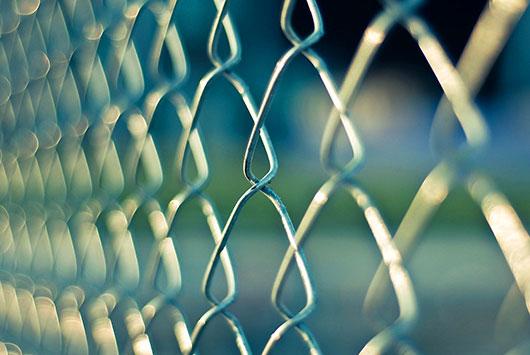 ogrodzenie-siatka